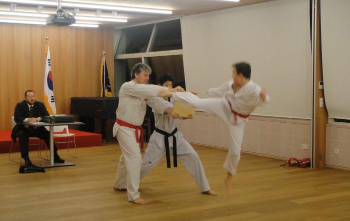 Taekwondo Dan Prüfung